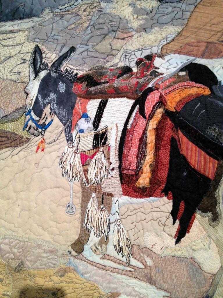 donkey-closeup